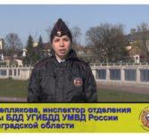 Пропаганда БДД УГИБДД УМВД России по КО.