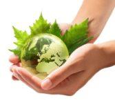 Игра «МЫ — экологи»